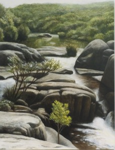 Waychinicup River (oil on marine ply 30 x 23 cm 2006)